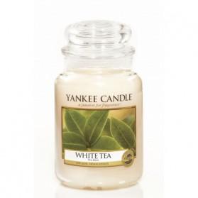 White Tea słoik duży