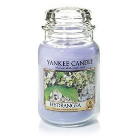 Hydrangea słoik duży