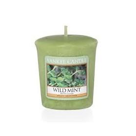 Wild Mint sampler