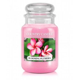 Blooming Plumeria słoik duży Country Candle