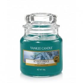Icy Blue Spruce słoik mały