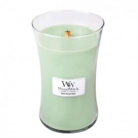 WW Duża White Willow Moss