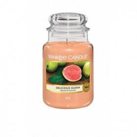 Delicious Guava słoik duży