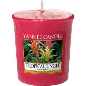 Tropical Jungle sampler
