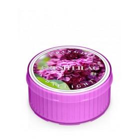 Fresh Lilac Daylight