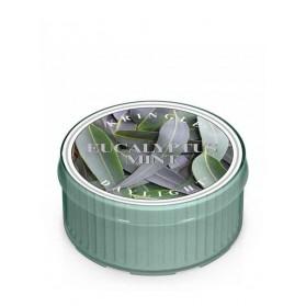 Eucalyptus Mint Daylight