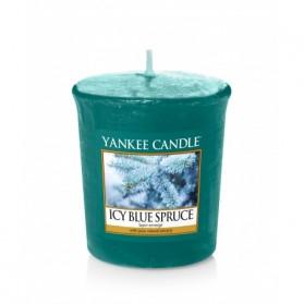 Icy Blue Spruce sampler