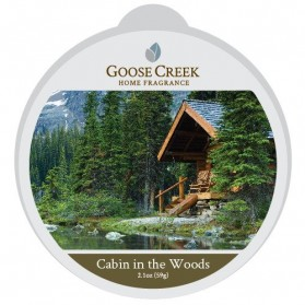 Cabin in The Woods wosk Goose Creek