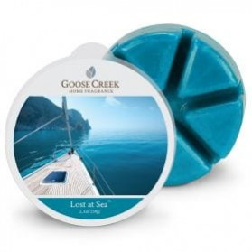 Lost at Sea wosk Goose Creek
