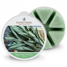 Sage Leaf & Citrus wosk Goose Creek