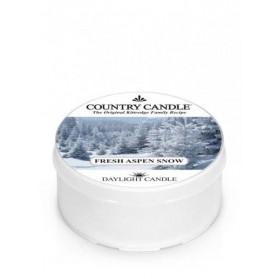 Fresh Aspen Snow daylight