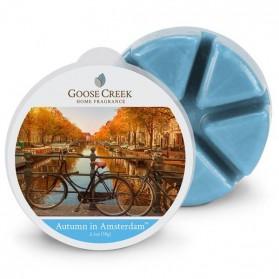 Autumn in Amsterdam wosk Goose Creek