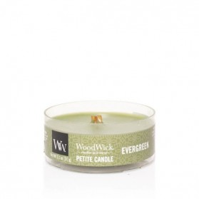 Evergreen świeca petite WoodWick