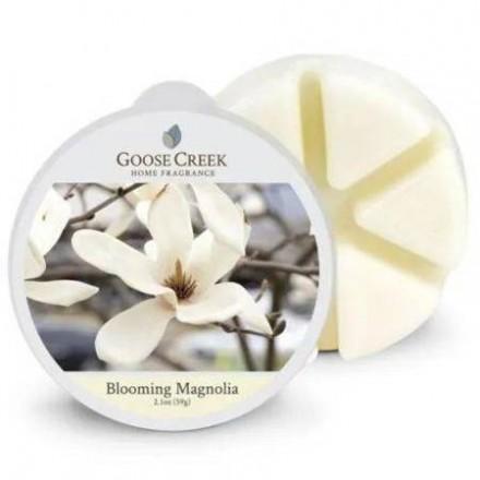 Blooming Magnolia wosk Goose Creek
