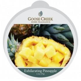 Wosk Exhilarating Pineapple Goose Creek